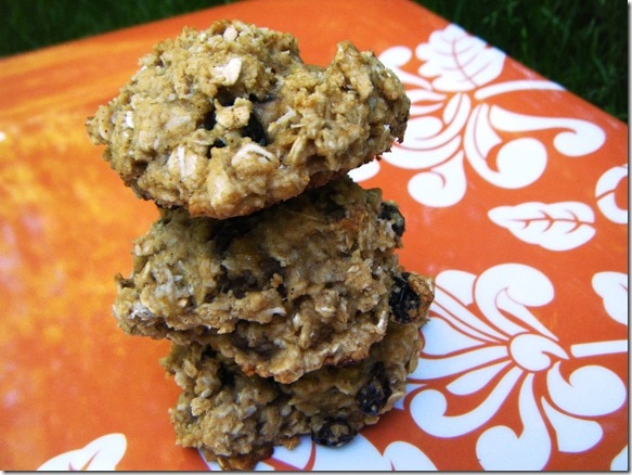 Oatmeal Banana Coconut Cookies