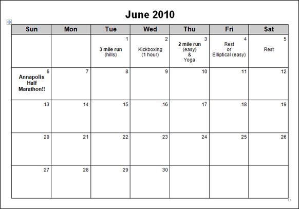 June_2010_Half_Marathon