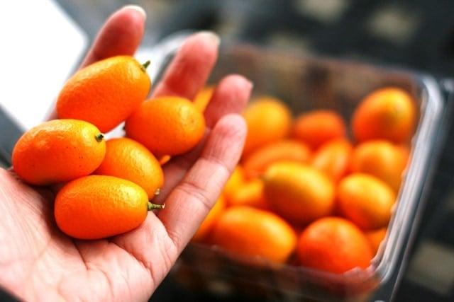 zesty kumquat quinoa salad amp kumquat nutritional benefits