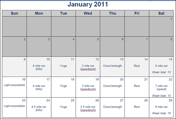 January_2011_training_plan