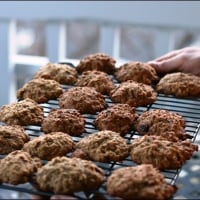 oatmeal dark chocolate chip cookies