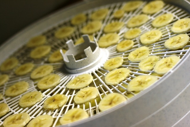 How to dry fruit using a dehydrator fannetastic food registered how to dry fruit using a dehydrator forumfinder Images