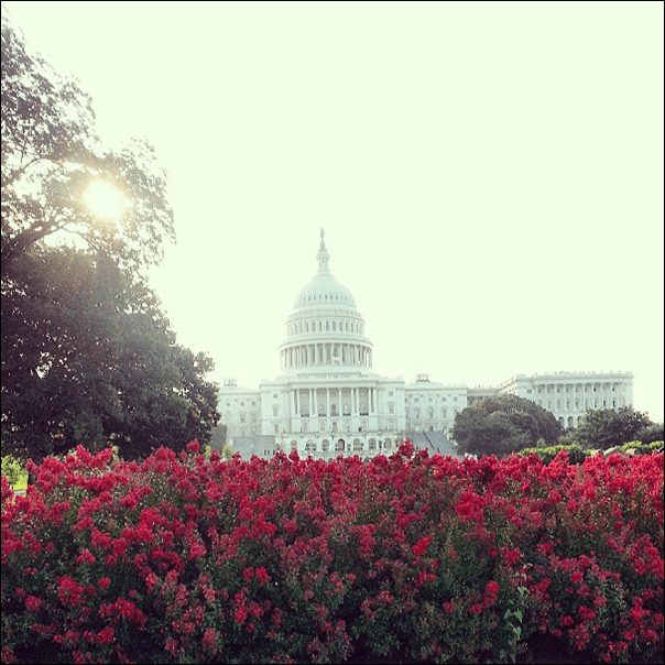 us_capitol_at_sunrise