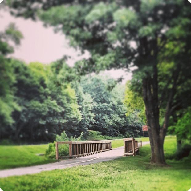 biking_the_mt_vernon_trail