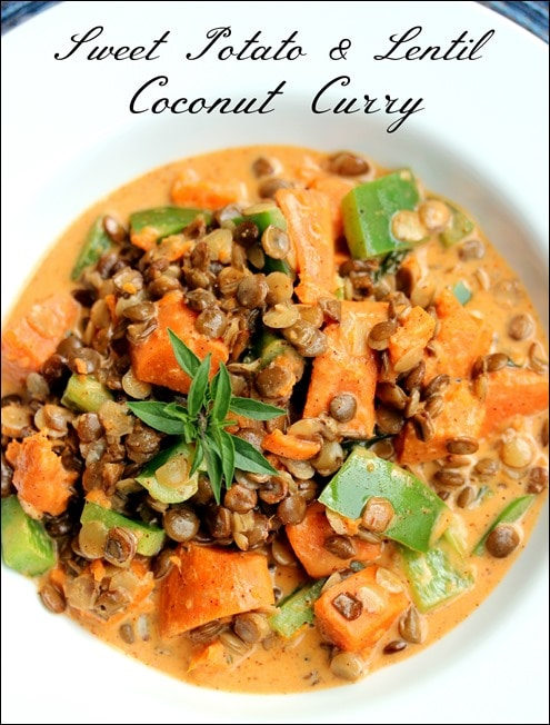 sweet potato lentil coconut curry