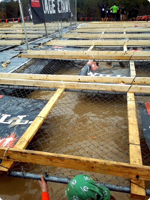 tough mudder cage crawl