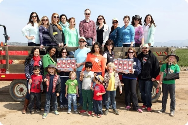 California Strawberry Commission Field Tour group