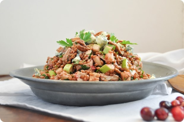 wheat berry salad with leftover turkey cranberry vinaigrette