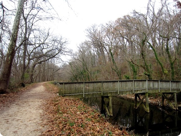 running on the c&o canal