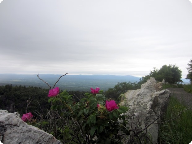 mohonk mountain house labyrinth trail