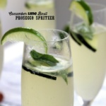 cucumber lime basil processo spritzer