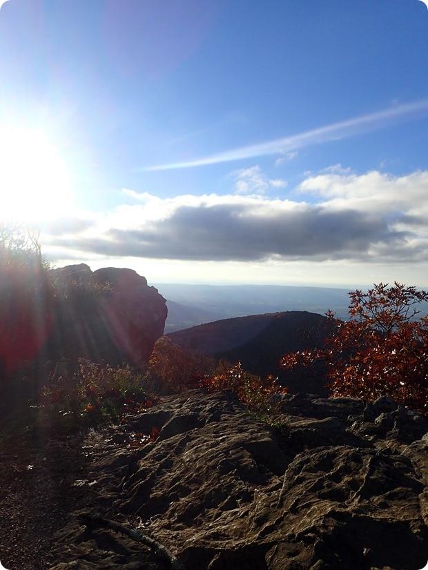 hawksbill mountain summit