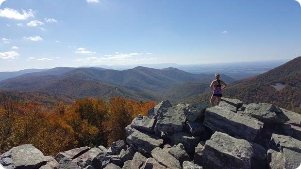 bearfence mountain views