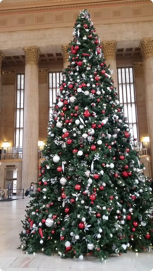 30th street station philadelphia christmas tree