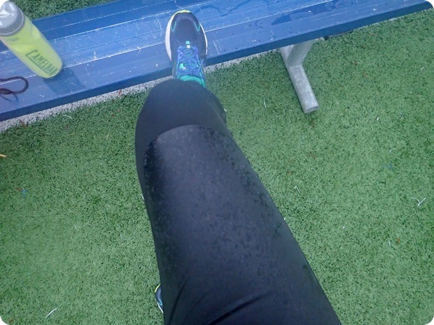 brooks seattle tights review