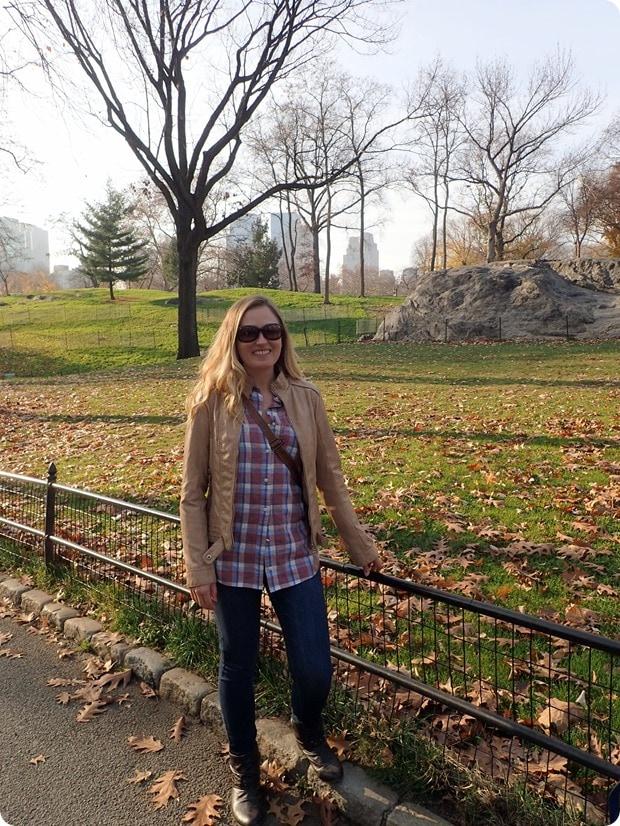 central park december