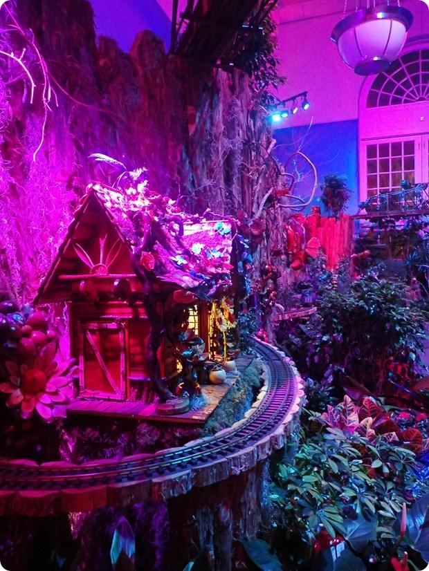 botanic garden dc christmas
