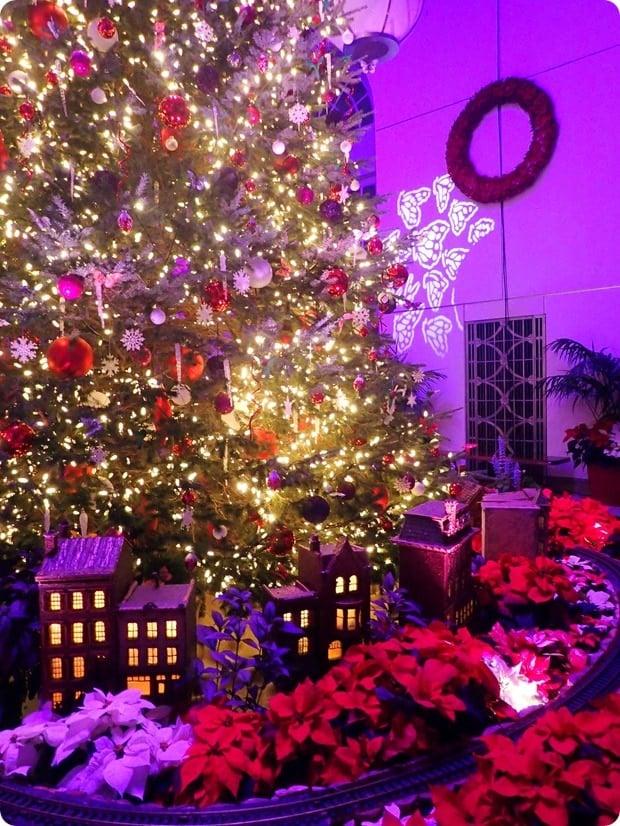 botanic garden dc christmas tree