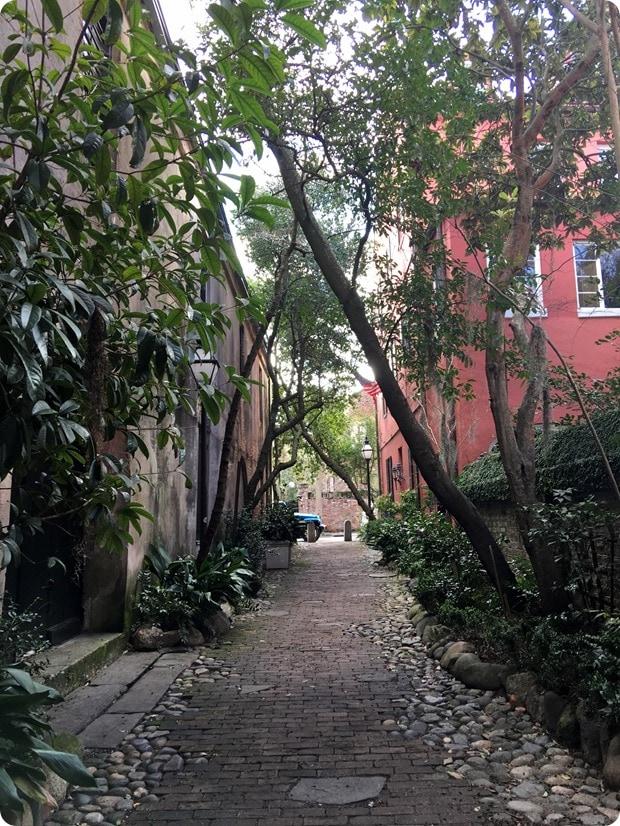 charleston alley walking