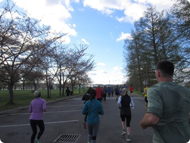 cherry blossom 10 miler hains point