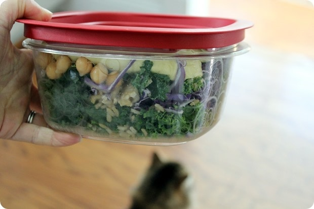 packed lunch kale salad