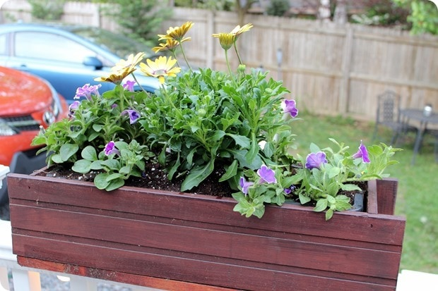 deck flower boxes