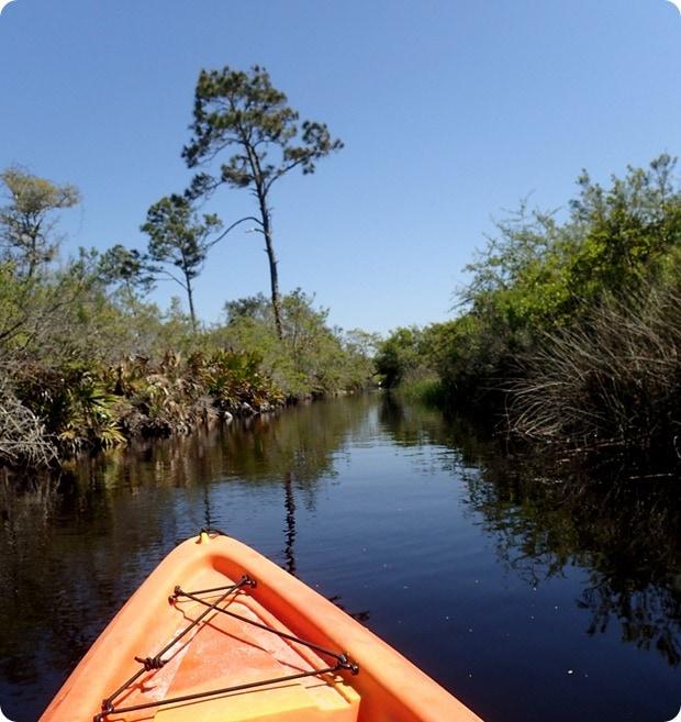 kayaking big lagoon state park