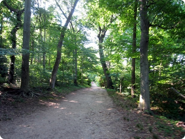 roosevelt island trails running