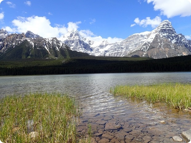 icefields parkway lunch spot