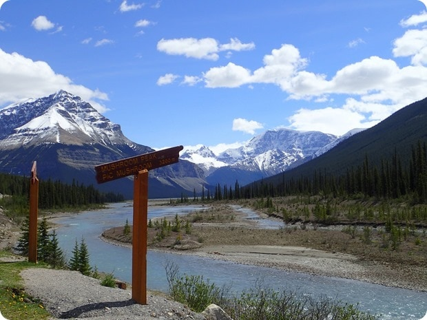 icefields parkway driving views