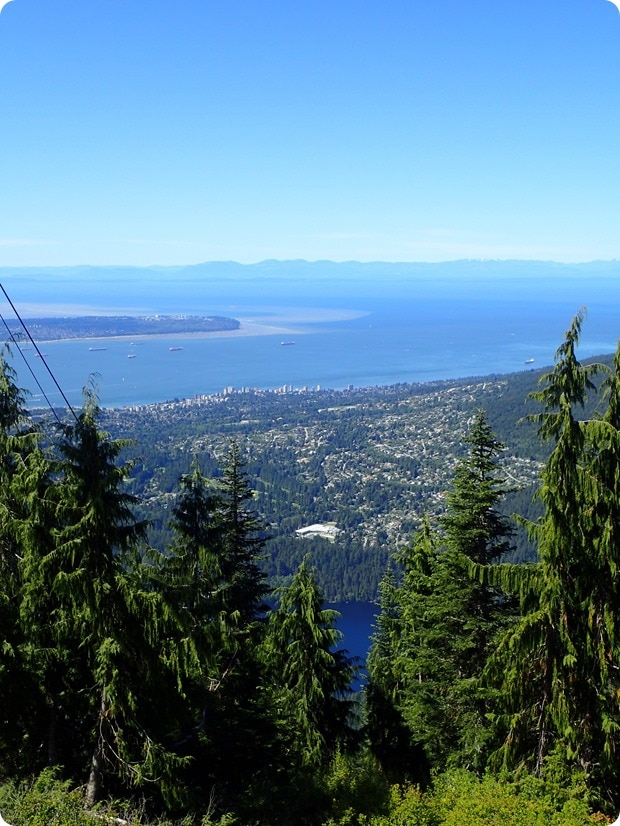 grouse mountain summit views