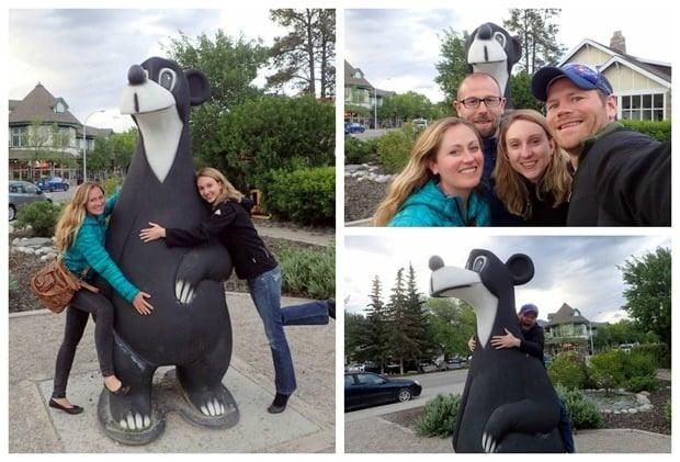jasper the bear
