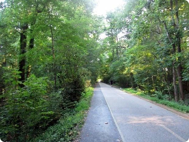 capital crescent trail shade