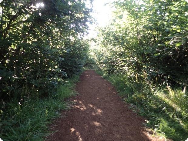 pre's trail eugene