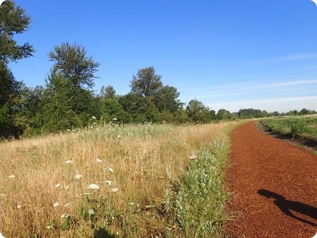 pres trail eugene