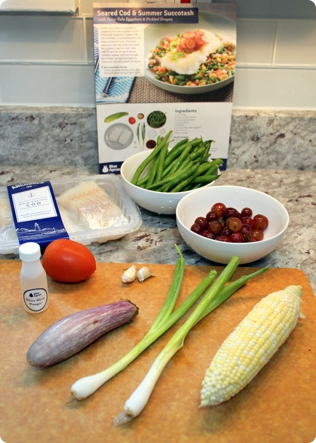 Recent favorite dinners from blue apron fannetastic food it has been especially helpful with all the travel weve been doing on the weekends no time for grocery shopping or planning dinner recipes forumfinder Gallery
