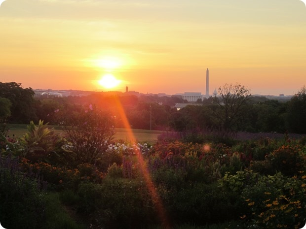 washington dc sunrise monuments
