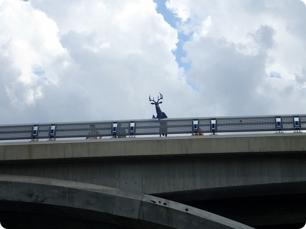deer on a bridge statue columbus