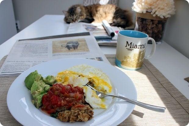 cat watching me eat