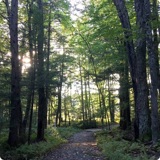 smugglers notch vermont trails