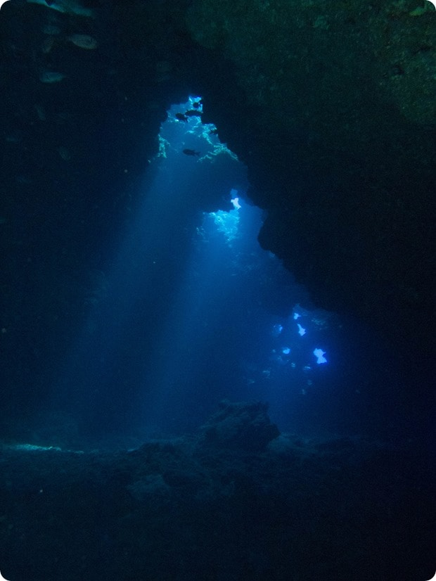 first cathedral dive