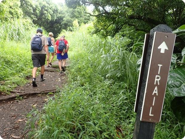 mount haleakala rainforest hiking