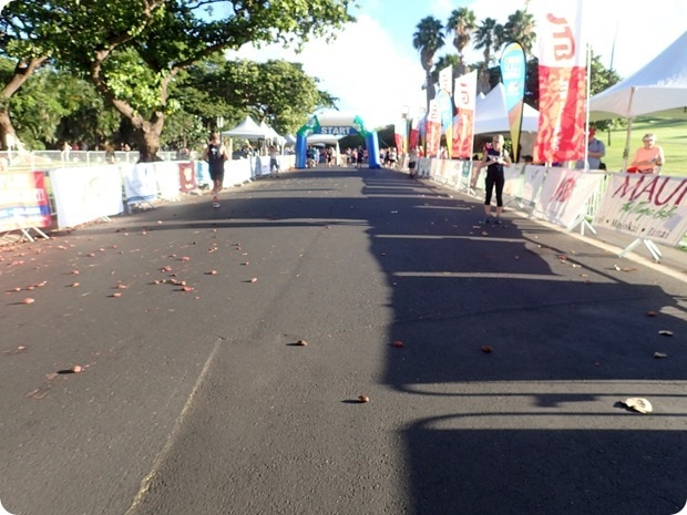 finish line maui slappy cakes 10k