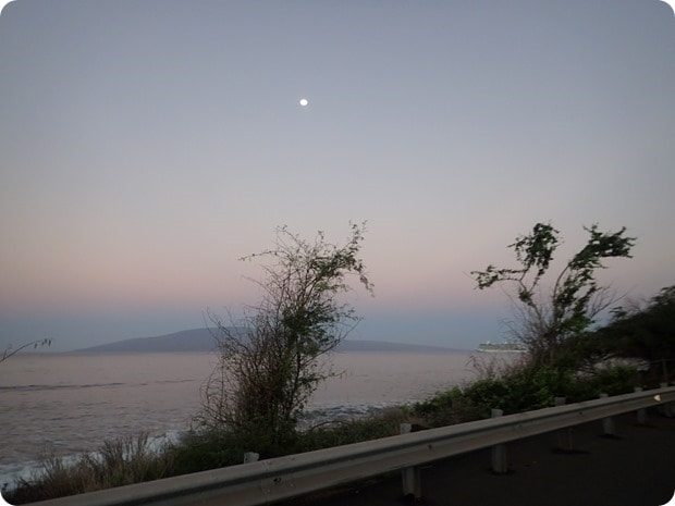 maui half marathon sunrise view