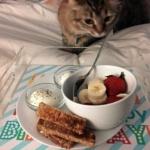 birthday breakfast in bed