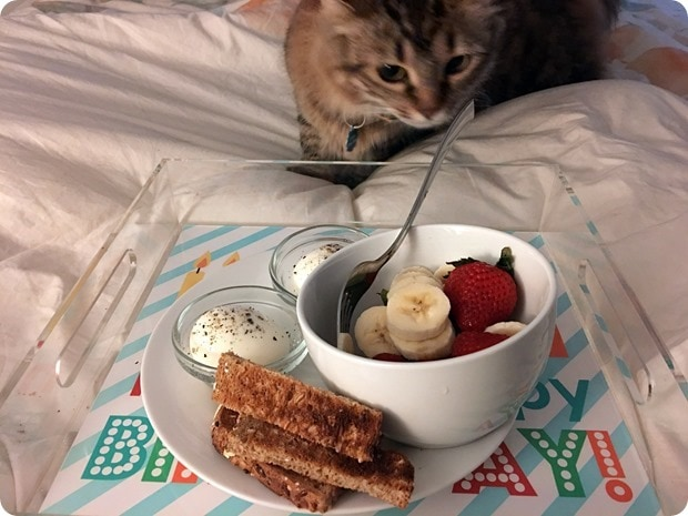 birthday breakfast in bed