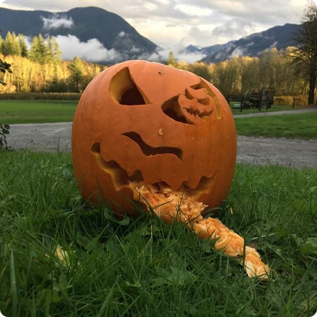 cascadian farm pumpkin