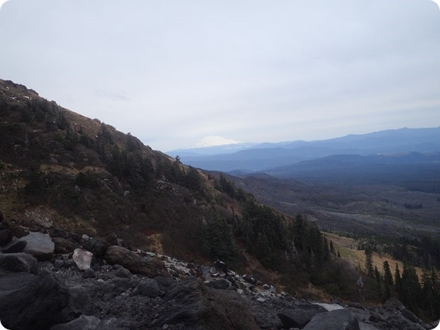 mt st helens hike view