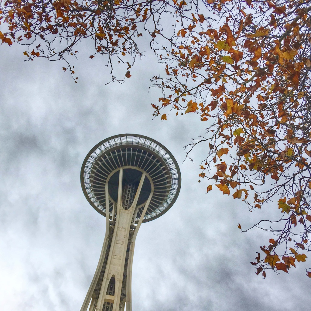 Space needle Seattle fall leaves