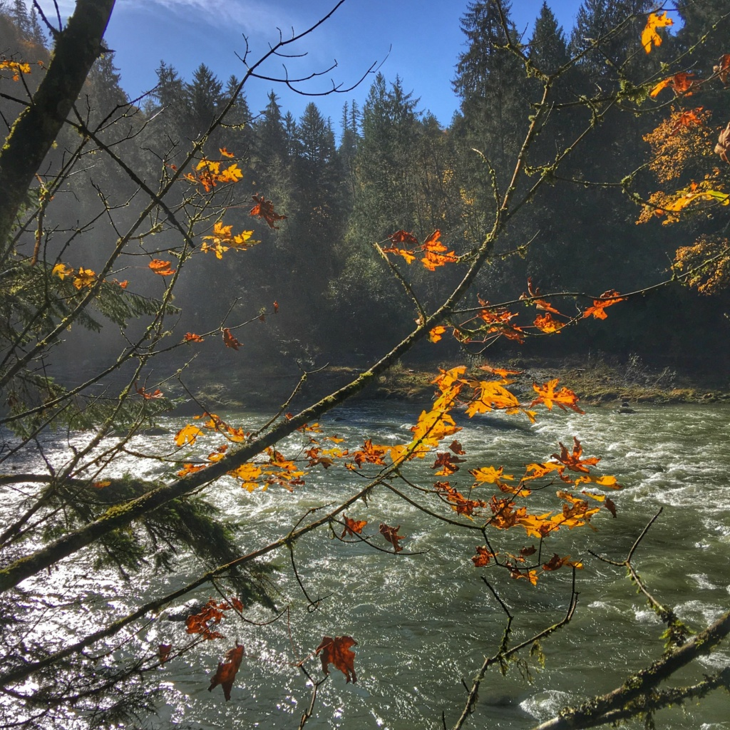 Snoqualmie falls hike fall leaves